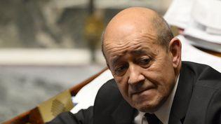 Le ministre de la Défense, Jean-Yves Le Drian, le 18 novembre 2015 à l'Assemblée nationale. (ALAIN JOCARD / AFP)