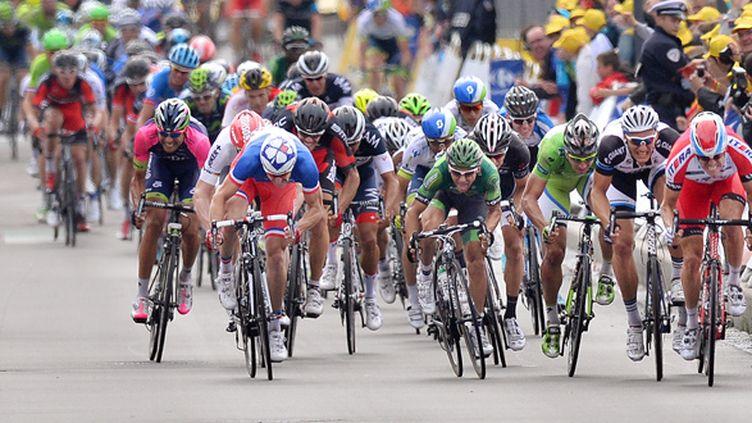 Les sprinteurs à l'affût (DE WAELE TIM / TDWSPORT SARL)