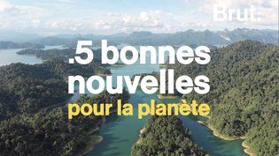 VIDEO. 5 bonnes nouvelles pour la planète (BRUT)