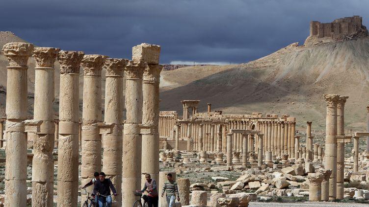Une vue de la cité antique de Palmyre (Syrie), le 14 mars 2014. (JOSEPH EID / AFP)