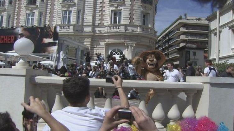 Le show signé Madagascar  (Culturebox / France 3 Côte d'Azur)