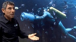 Ancien compagnon de mer du commandant Cousteau, François Sarano a participé au tournage du film de Jérôme Salle.  (France 3 Culturebox)