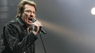 Johnny Hallyday en concert à Nice en 2009  (PHOTOPQR/NICE MATIN/MAXPPP)