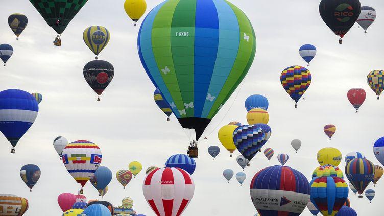 Les ballons ont parcoucru cinq km en un peu moins d'une heure avant de se poser dans un champ. (JEAN-CHRISTOPHE VERHAEGEN / AFP)
