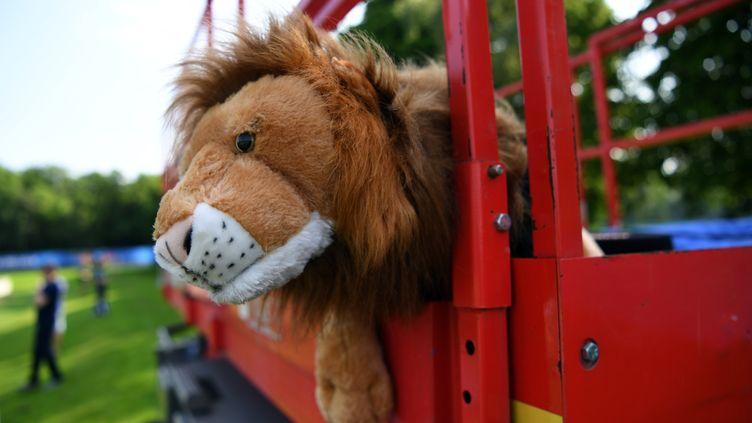 Leo le lion, mascotte de l'équipe d'Angleterre, photographiée le 7 juin 2016 à Chantilly (Oise). (PAUL ELLIS / AFP)
