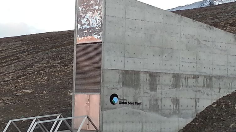 Le Global Seed Vault, la réserve à graines au Spitzberg en Arctique.  (ANNE-LAURE BARRAL / RADIO FRANCE)