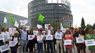 """Les eurodéputés du groupe des Verts sont venus soutenir les marcheurs""""cobayes"""" lors deleur ultime étape devant le Parlement européen à Strasbourg (ANJA VOGEL / RADIO FRANCE)"""