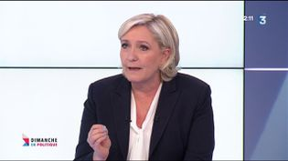 MLP (CAPTURE D'ÉCRAN FRANCE 3)