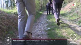 Des randonneurs dans le Vexin (France 2)