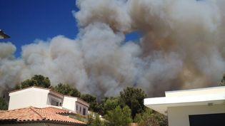 Le feu s'est déclaré vers 15h15 à partir d'un chemin communal près du village d'Ensuès-la-Redonne (Bouches-du-Rhône), vendredi 15 juillet 2016. (ROMAIN27 / TWITTER)