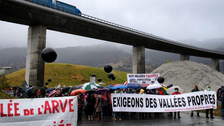 Des manifestants défilent contre la pollution dans la Vallée de l'Arve, à Passy (Haute-Savoie), en novembre 2016 (GR?GORY YETCHMENIZA / MAXPPP)