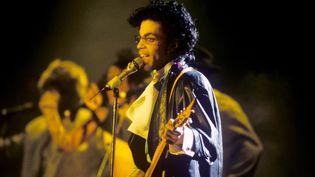 Prince le 22 mai 1987 à Munich  (Fryderyk Gabowicz / Picture Alliance / DPA / AFP)