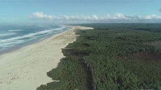 En Aquitaine, direction la côte de sable. Ce massif exceptionnel sur 230 kilomètres est rectiligne. Un paysage à la fois reposant et paradisiaque. (FRANCE 3)
