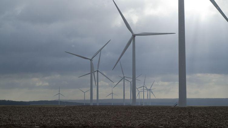 Des éoliennes dans un champ en Picardie, le 30 janvier 2010. (GILLES MENANTEAU / BIOSPHOTO / AFP)