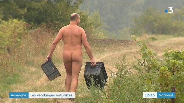 Auvergne : les vendanges naturistes
