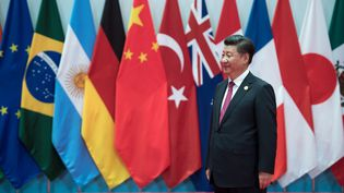 Le président chinois Xi Jinping au sommet du G20. (BERND VON JUTRCZENKA / DPA)