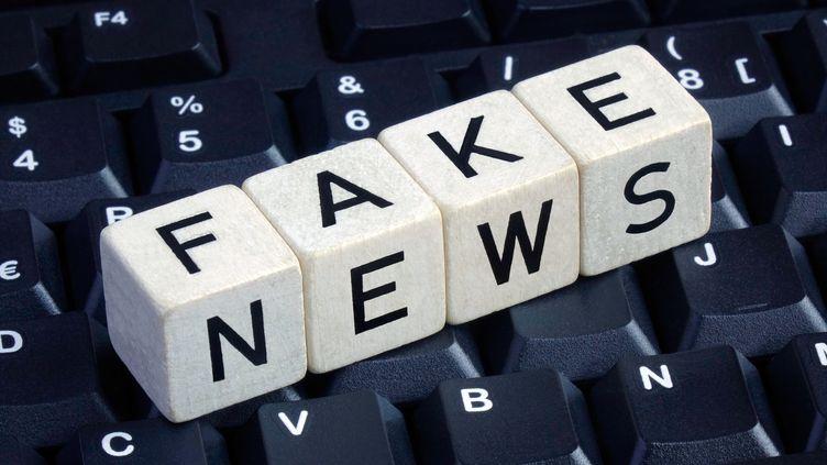 """79% des Français jugent qu'""""il faut mieux responsabiliser l'information sur les réseaux sociaux et les plateformes internet"""", selon un sondage publié le 11 janvier 2018. (SASCHA STEINACH / DPA-ZENTRALBILD)"""
