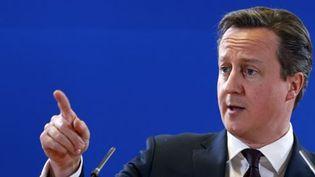 Le Premier ministre britannique, David Cameron, à Bruxelles le 20 mars 2015 (Reuters - François Lenoir)