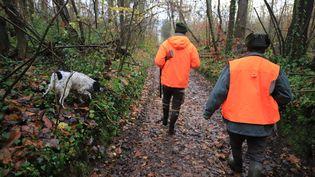 Une chasse organisée dans une forêt de Mélicocq dans l'Oise. (DOMINIQUE TOUCHART / MAXPPP)