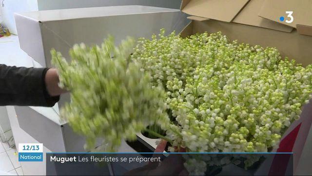 1er mai : les fleuristes se préparent à vendre du muguet