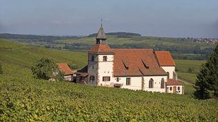 La chapelle de Saint Sébatien dans les vignes de Dambach en Alsace le 30 mars 2015. (SYLVAIN CORDIER / BIOSPHOTO)