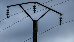 Des lignes à haute-tension, dans l'Eure (illustration). (JOEL SAGET / AFP)