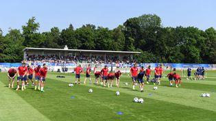 L'équipe d'Angleterre sur le stade des Bourgognes de l'US Chantilly, le 7 juin 2016. (PAUL ELLIS / AFP)