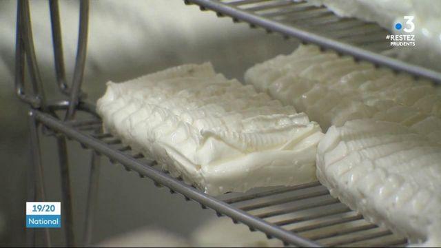 Lozère : une fromagerie redonne vie aux villages du causse Méjean
