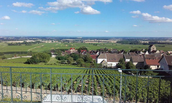 Ledomaine Glantenay à Volnay (Bourgogne) (© THIERRY GLANTENAY)