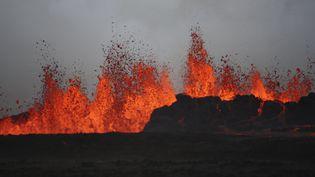 De la lave du volcan Bardarbunga, en Islande, le 31 août 2014. (  REUTERS)