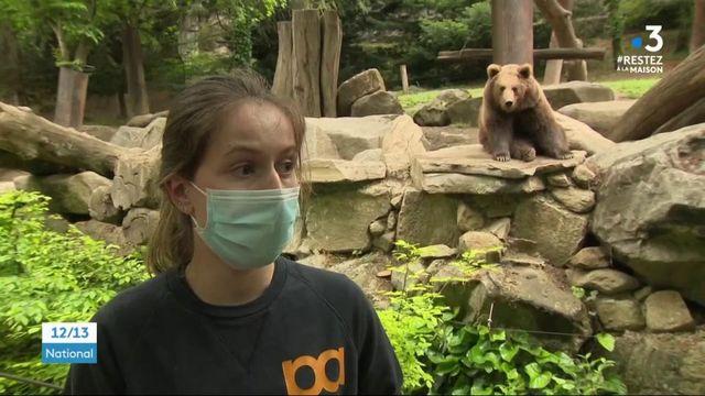 Hautes-Pyrénées : la vie confinée des animaux du zoo d'Argelès-Gazost