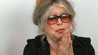 Brigitte Bardot (2006)  (Jacques Collet/AFP)
