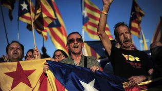 Des militants pour l'indépendance de la Catalogne lors d'une manifestation à Barcelobne, le 23 octobre 2013. (JOSEP LAGO / AFP)