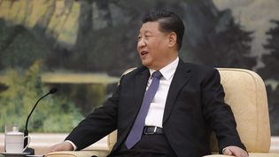 Xi Jinping, le président chinois, s'entretient avec le directeur de l'OMS, le 28 janvier 2020. (NAOHIKO HATTA / AFP)