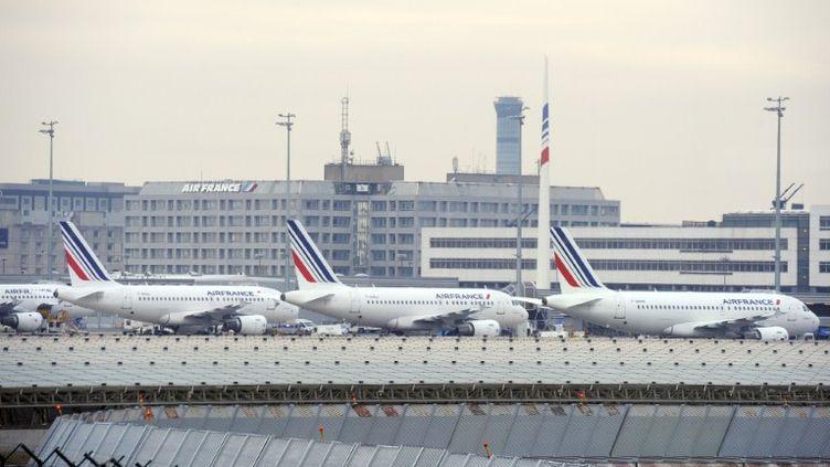 Des avions Air France stationnés à l'aéroport de Roissy-Charles-de-Gaulle, le 7 février 2012. (BERTRAND GUAY / AFP)