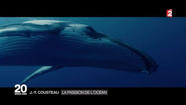 La sortie du film l'Odyssée retrace la vie de Cousteau