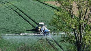 Un agriculteur traite ses champs, à Villefranche-de-Lauragais (Haute-Garonne), le 17 avril 2018. (REMY GABALDA / AFP)