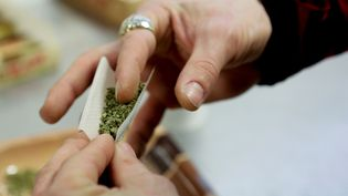 Une personne roule un joint de cannabis, lors d'un festival dédié à la consommation, à Seattle (Etats-Unis), le 20 avril 2014. (JASON REDMOND / REUTERS)