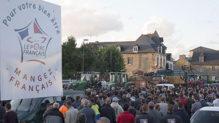Des agriculteurs manifestent à Lamballe (Côtes-d'Armor) le 28 juillet 2015. (EMMANUELLE RODRIGUE / CITIZENSIDE.COM / AFP)