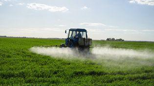 """Marcel """"travaillait dans les rangs pendant et après les traitements"""" aux pesticides (Photo © Sauletas - Fotolia)"""