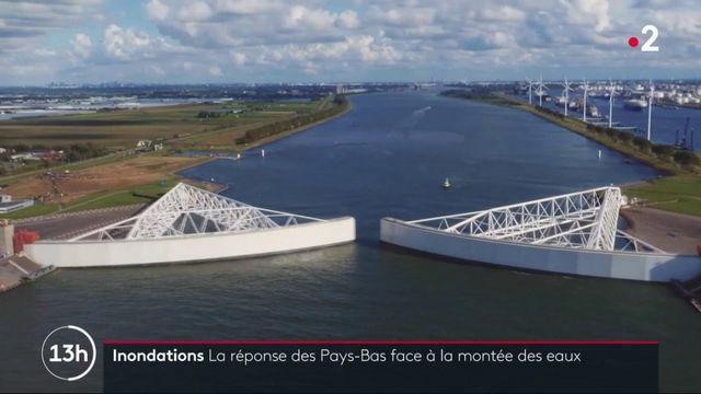 Pays-Bas : un modèle d'adaptation aux aléas climatiques