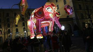 L'éléphant sera accompagné du cobra, du tigre ou encore du dragon  (PHOTOPQR/LE PROGRES/JEGAT MAXIME)