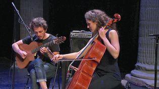 Détours de Babel propose des concerts en ligne avec des musiciens de différents horizons (France 3 Alpes)