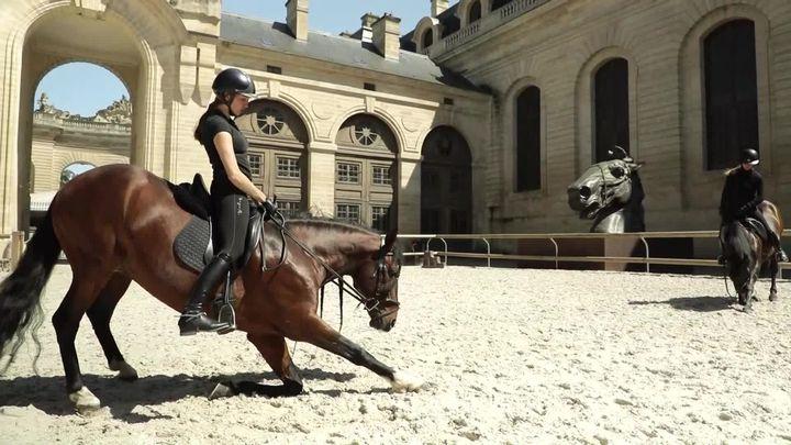 Séance d'entrainement aux Grandes Ecuries du château de Chantilly. (L. Bazizin / France Télévisions)