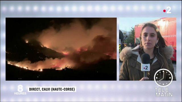 Haute-Corse : les pompiers continuent à lutter contre l'incendie de Calenzana
