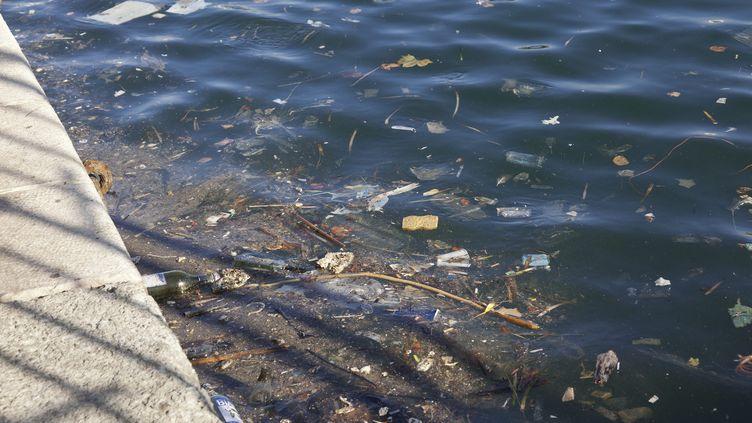 Des déchets flottent dans l'eau, sur le rivage de Toulon. (CHRISTIAN WATIER / MAXPPP)