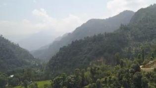 Le Sikkim, petit État indien isolé dans un océan de pesticides, est passé au bio depuis plusieurs années. Un pari audacieux, coûteux, mais qui semble gagné. (France 2)