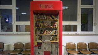 Une ancienne cabine téléphonique transformée en mini-bibliothèque à l'hôpital IKEM de Prague, janvier 2014.  (Michal Cizek / AFP)