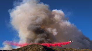 Un avion largueun liquide ignifugeàLytle Creek (Californie) pour limiter la propagation de l'incendie Blue Cut, en 16 août 2016. (RINGO CHIU / AFP)