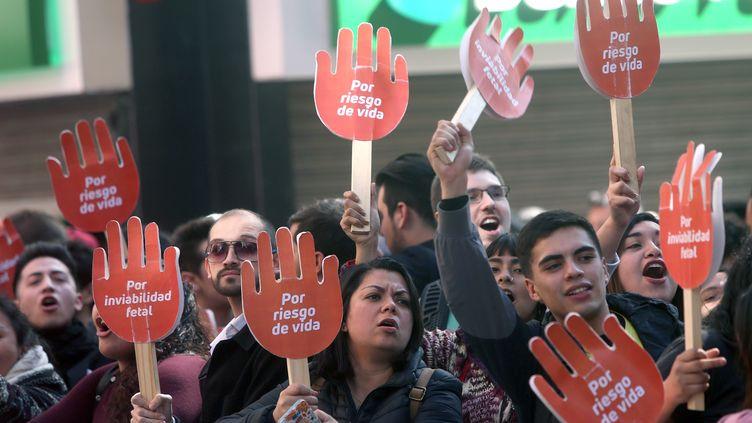 Des militants pro-avortement manifestent près du Tribunal constitutionnel du Chili, lundi 21 août 2017 à Santiago. (CLAUDIO REYES / AFP)